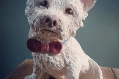 Boo West Highland Terrier