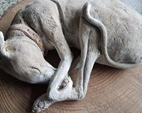 sleeping-hound