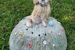 Labradoodle-dog