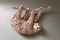 hanging-sloth